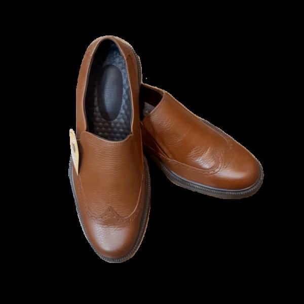 کفش هشترک رادین